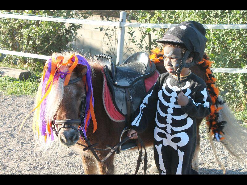 Halloween 2014 117