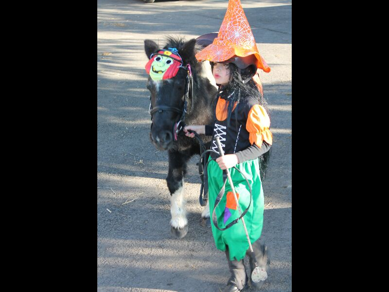 Halloween 2014 76